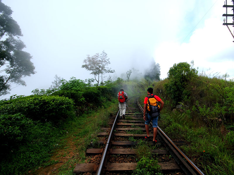 trekking guide in Haputale where you will be taking the most scenic trekking trip in Sri Lanka