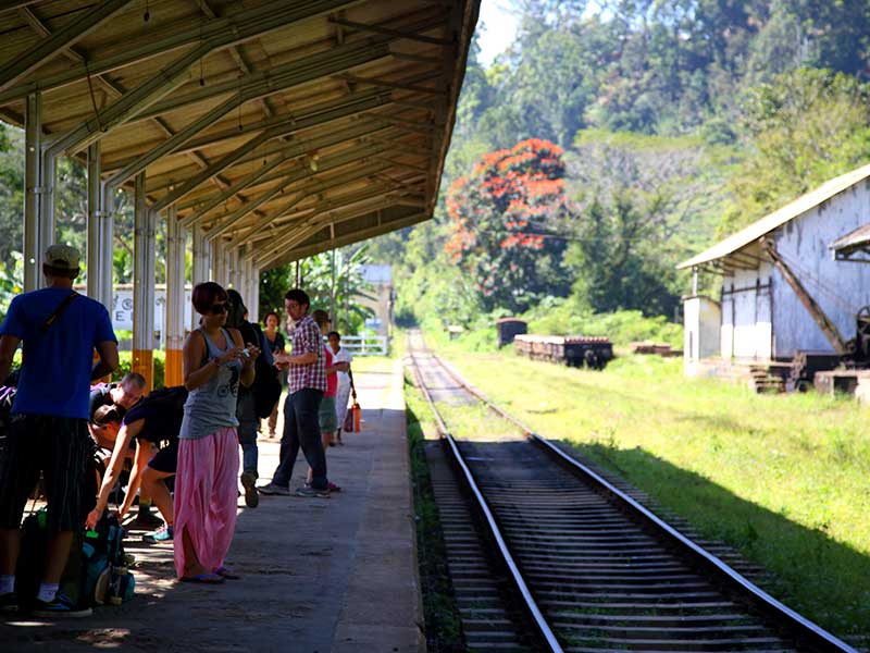 Get on board the scenic train from Nuwara Elia to Kandy