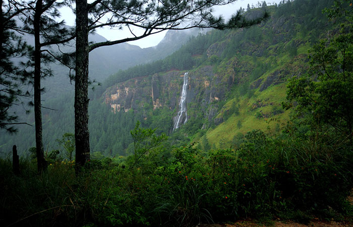 Train and trek from Bandarawela to bambarakanda waterfall