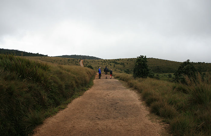 Trek to Horton Plains
