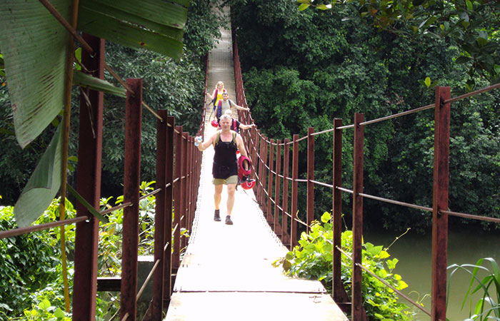 Rain forest walk in Kitulgala,