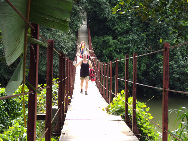 Rain forest walk in Kitulgala