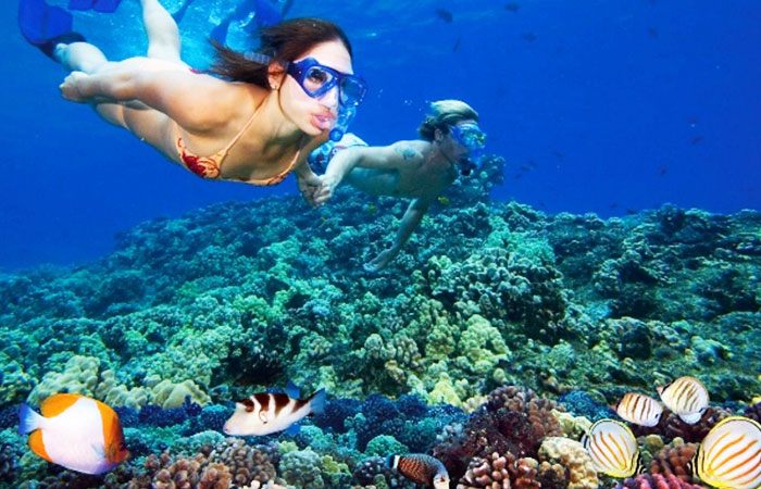 Samoa Snorkeling Tour