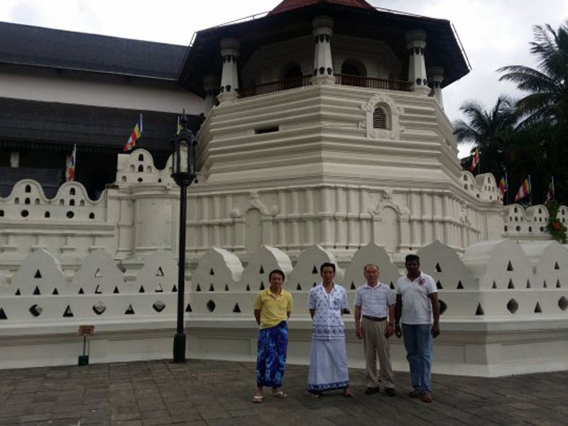 Kandy, Pinnawala Elephant Orphanage and Peradeniya Botanical Garden Day Tour