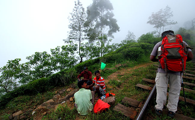 Horton Plains Ohiya and Bambarakanda Waterfall Trekking Trip in Sri Lanka - Bambarakanda Waterfall and Horton Plains Trekking - Scenic Trekking and Hiking Tours in Horton Plains and Bambarakanda Waterfall - Horton Plains trekking tours - bambarakanda wate