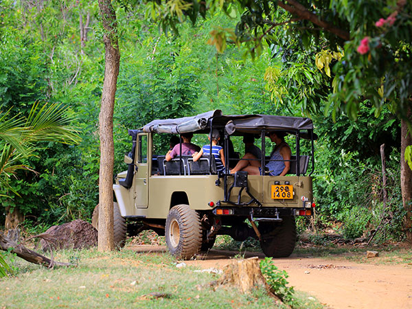 Habarana Adventures in Sri Lanka | Habarana Tours in Sri lanka | Sri Lanka Habarana Tours | Habarana Tours