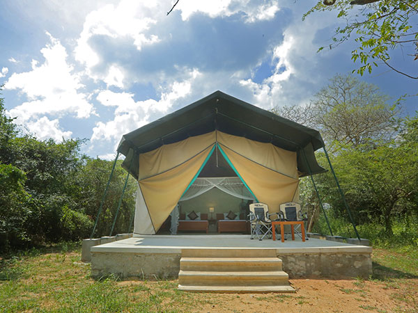 Tented Safari Camping in Sri Lanka | Yala safari Camping Tours | Wilpattu Safari Camping Tours | Udawalawe Safari Camping Tours