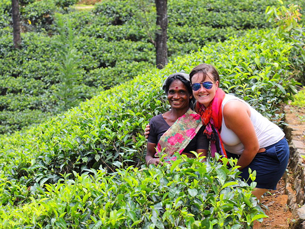 Day Trekking Tours in Knuckles mountains Kandy | Day Trips to Knuckles mountains Kandy | Kandy Knuckles mountains day Tours
