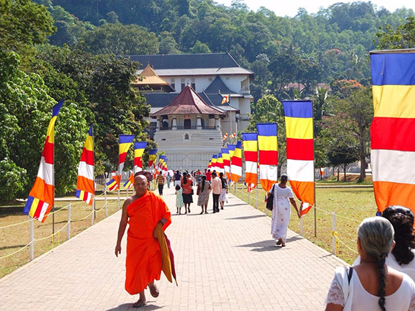 Day Tour to Kandy from Colombo | Sri Lanka Kandy Pinnawala Day Tours from Colombo | Kandy and Pinnawala Day Tours