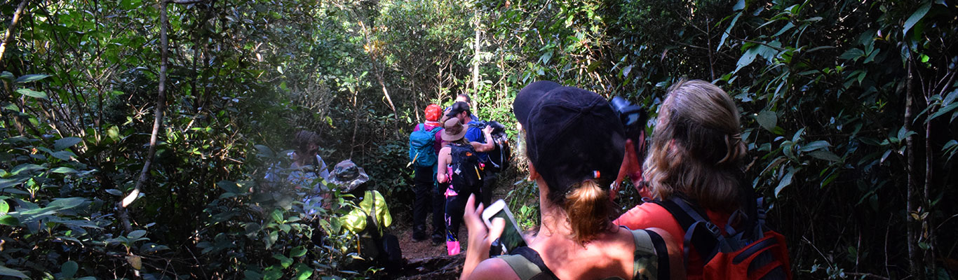 Trekking in Sri Lanka, Trekking Tours in Sri